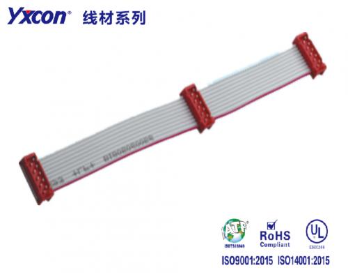 2.54 M M Cable 10P 三件套 红色/专业化定制/显示屏/医疗连接器